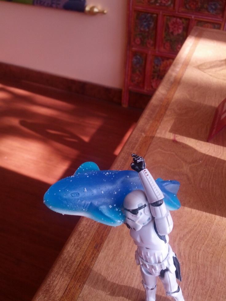 Happy Shark Week 2013!